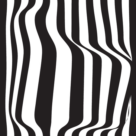 Striped seamless abstract background. black and white zebra print. Vector illustration. eps10. Çizim