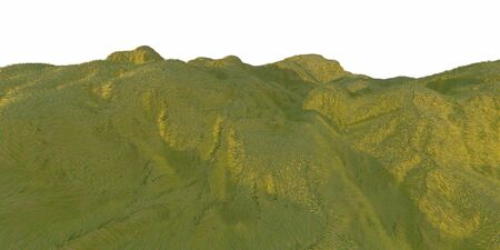 Green grass hills lit by warm sunlight with the white background aerial top view from drone or plane. 3d illustration render