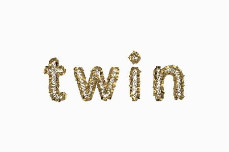 The word Twin is made by gold wired jewelry letters isolated on white background. 3D illustration image