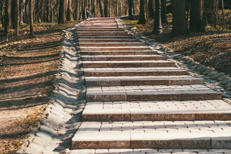 stone stairs in a forest park. A beautiful day in early spring. the concept of climbing and achieving your goals. 写真素材