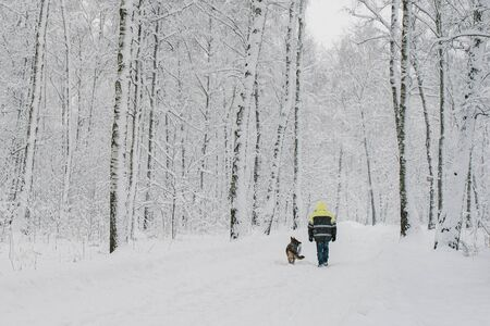 A lone man walks in a snow-covered forest with a German shepherd. Hes wearing a reflective suit. Rear view