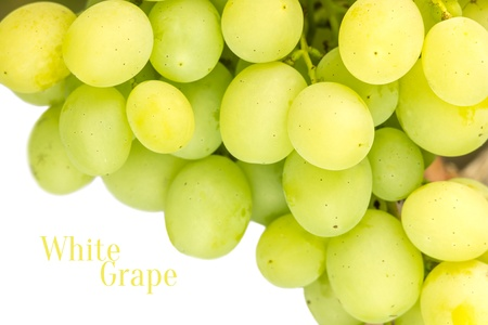 White table grape isolated on white background