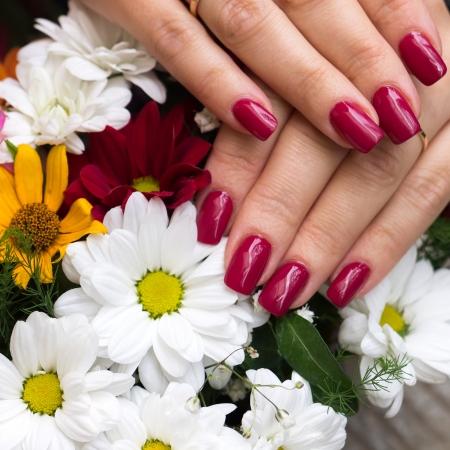 peinture rouge: Les mains de la femme avec un bouquet de fleurs Banque d'images