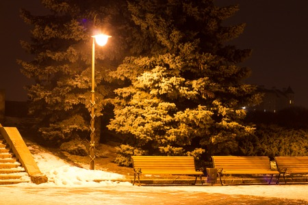 Winter city landscape. Evening Park with Lantern photo