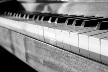 Keyboard of the Piano. Close-up Black and White  image photo
