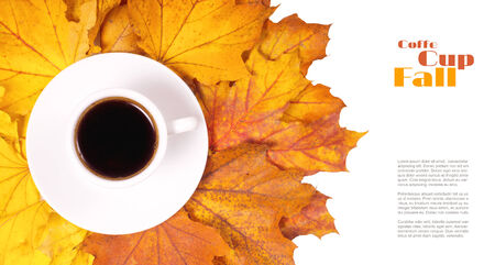 Coffee Autumn background. Isolated on White Cup of coffee on fallen leaves. Top View photo