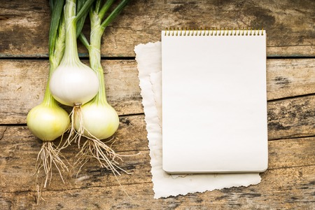 Menu background. Vegetables on table with cook book. Cooking with recipe book. Onion. photo