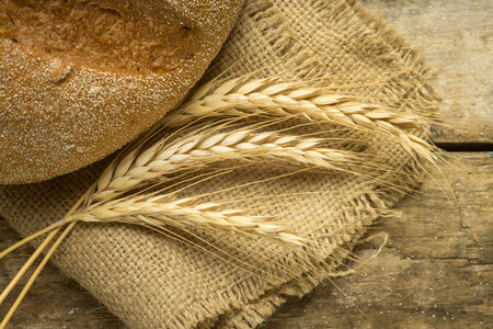Loaf of whole wheat bread with ears on wood background photo