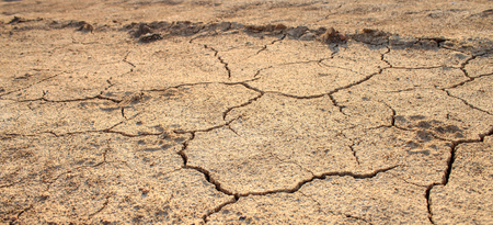 Cracked waterless ground at summer drought . Natural disasters desert background