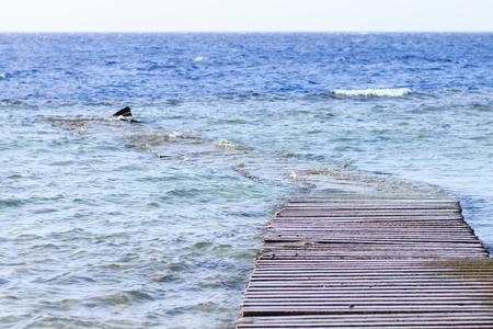 wrecks: Wrecks of old sunken wooden pier on the Red sea. Seaside landscape image Stock Photo