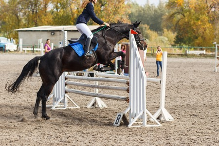 competitor: Competitor in a show jump taking her course. Equestrian sport background