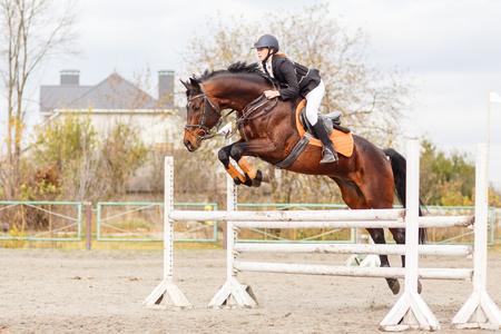 Jonge vrouwelijke ruiter op baai paard springen over hindernis op paardensport concurrentie Stockfoto