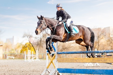 Young Female Rider On Bay Horse Jump Over Hurdle Stock Photo Picture And Royalty Free Image 71740168
