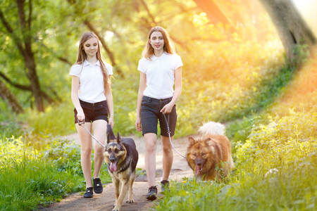 stroll: Two teenage girls walking with her dogs in park