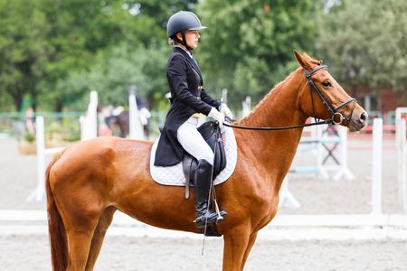 Jeune cavalier à cheval à la compétition dressage Banque d'images - 82333996