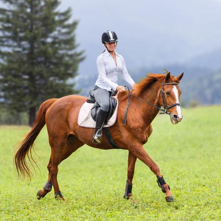 Jeune, femme, équitation, sorrel, cheval, montagne, pré Banque d'images - 83550594
