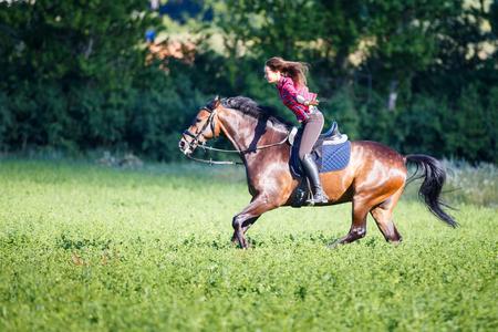 Bonne jeune femme à cheval au beau jour d'été Banque d'images - 84109544