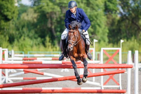 Young rider man jumping on equestrian competition Stock Photo
