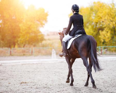 Mujer jinete joven en el caballo de bahía que realiza la prueba avanzada en la competencia de la doma clásica. Imagen de vista trasera del fondo del evento ecuestre con espacio de copia Foto de archivo
