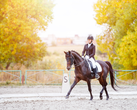 Equestrian sport event at fall with copy space. Young woman riding bay horse on dressage advanced test
