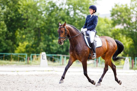 Young rider woman on her course in dressage competition advanced test Stock Photo