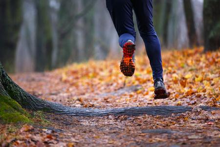 Autumn trail running background. Man running in fall park