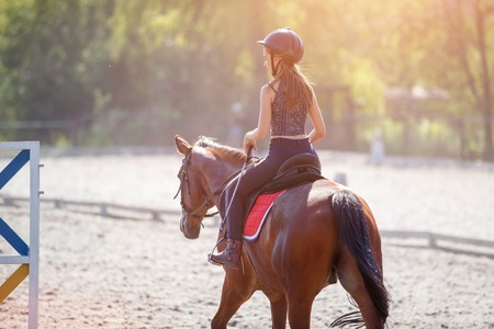 Young teenage girl riding her horse at the training on summer day Reklamní fotografie