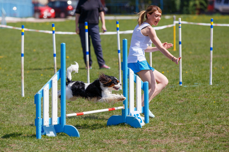 Dog with handler vaulting hurdle in agility trial