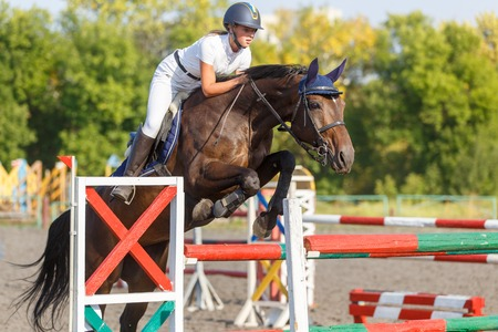 Young horse rider girl on show jumping competition