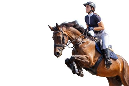 Salto della ragazza del cavaliere del cavallo isolato su priorità bassa bianca Archivio Fotografico