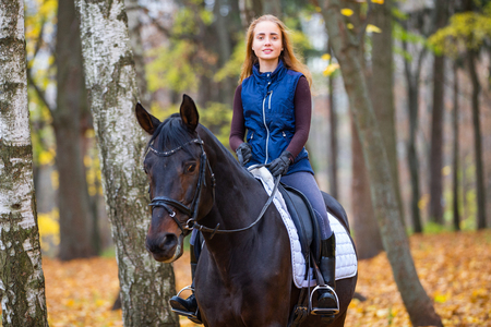 Teenage girl riding horse in autumn park