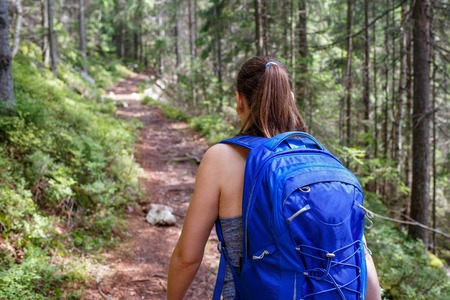 Young smiling woman with backpack hiking in forest Banco de Imagens