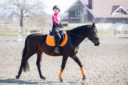 Young girl riding horse on equestrian training Zdjęcie Seryjne