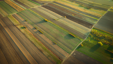 Crop field in autumn. On top. Reklamní fotografie - 88456940