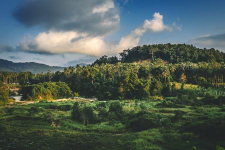 熱帯の島の風景.水平方向の画像。 写真素材