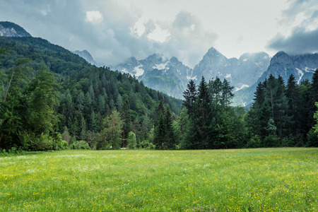 beautiful pasture below the Julian Alps, Slovenia, Kranjska Gora Banque d'images