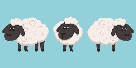 Sheep in different poses. Farm animal in cartoon style.