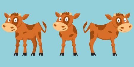 Calf in different poses. Farm animal in cartoon style.
