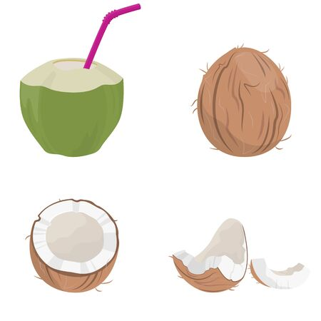 Set of coconut elements. Juicy fruit in cartoon style.