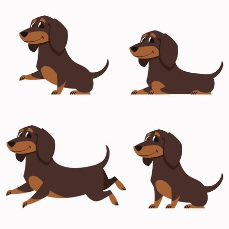 Dachshund in different poses. Set of cute pets in cartoon style. Vector Illustratie