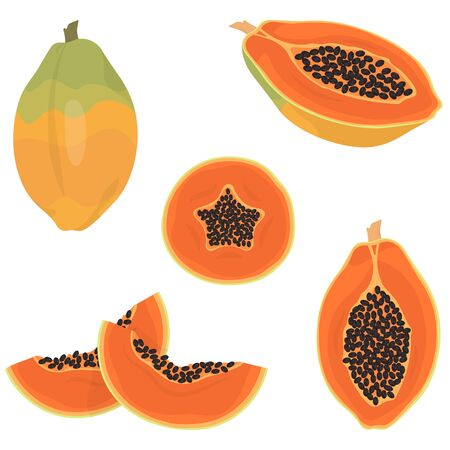 Whole and sliced papaya. Tropical fruit in cartoon style.