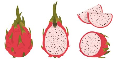 Whole and sliced pitaya. Dragon fruit in cartoon style.