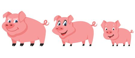 Pig family in cartoon style. Farm animals of different sex and age.