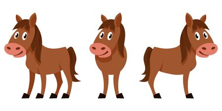 Foal in different poses. Farm animal in cartoon style.