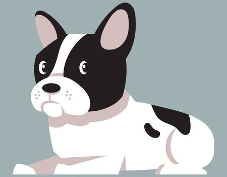 Lying French Bulldog. Cute pet in cartoon style.