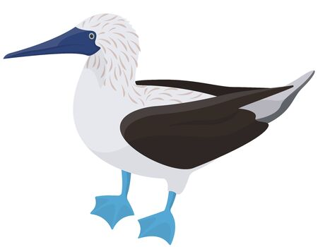 Blue-footed booby side view. Tropical bird in cartoon style.