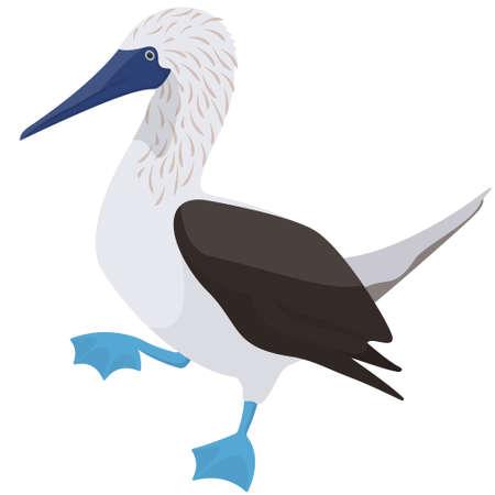 Posing Blue-footed booby. Ocean bird in cartoon style. Vektoros illusztráció