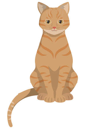 Sitting red-headed cat. Beautiful pet in cartoon style.