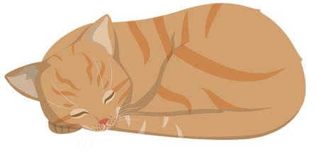 Sleeping red-headed cat. Beautiful pet in cartoon style. 矢量图像