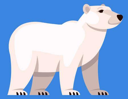 Polar bear three quarter view. Arctic animal in cartoon style.